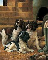 Nigel Hemming GROUND FORCE Springer Spaniel, Art Canine Ltd Edition  #1