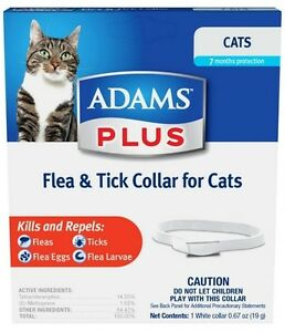 Adams Plus Flea & Tick Collar for Cats & Kittens (Free Shipping in USA)