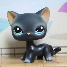 Littlest Pet Shop Animals Collection LPS Toys Black Short Hair Siamese Cat #994