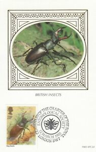 (42623) CLEARANCE GB Benham FDC Insects Postcard Stag Beetle London SW7 1985