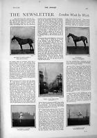 Original Old Antique Print 1900 Ambush Horses Cockshott Henderson Duke Norfolk