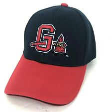 Gwinnett Braves Atlanta Braves Farm Team MILB Baseball Cap Hat Blue Red