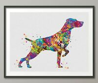 Weimaraner Dog Art Watercolor Print Pet Gift Doglover Poster Friend Pointer-1462