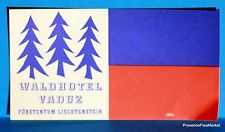 HOTEL WALDHOTEL VADUZ    Original  luggage label  BD88