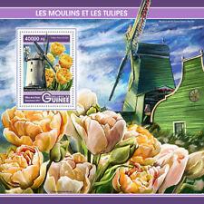 Guinea 2017 MNH Windmills & Tulips Ballycopeland 1v S/S Flowers Stamps
