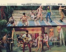 ELVIS PRESLEY SHELLEY FABARES  CLAMBAKE 1967 4 VINTAGE LOBBY CARDS LOT