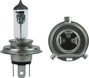 Bulbs P43t 12v 60/55w H4 (Per 10)