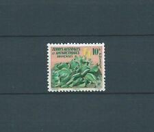 TAAF - 1958 YT 11 - TIMBRE NEUF* légère trace de charniére