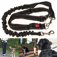 Elastic Pet Dog Strong Bungee Lead Leash Training Anti Shock Dual Padded