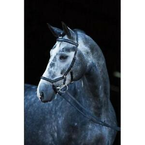 Horseware Rambo Micklem Original Competition Bridle with FREE GIFT