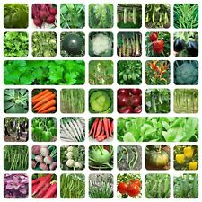 Organic 45 Variety of Vegetable Seeds with Instruction Manual