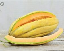 Melon & Pear Fragrance Oil Candle/Soap Making Supplies 4 oz Free Shipping