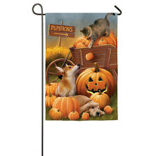 """Bombs Away! Cat Knocking Pumpkins on Dogs 2 Sided 12.5"""" x 18"""" Small Banner Flag"""