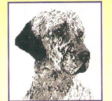 English Setter Blue Belton Counted Cross Stitch Complete Kit Last One!