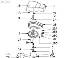 Cinghia figura n° 25 per ponte sollevatore OMCN 199C - 199U