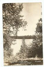 Nisswa, MN Minnesota old RPPC Postcard, Clark Lake by L.L. Cook
