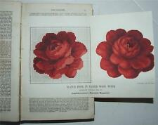 Englishwoman's Domestic Magazine, 1862-64,Fashion Embroidery Patchwork Magic