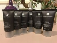 TEMPLE SPA 10 Good Hair Day Frequent Use SHAMPOO .84 fl oz each Travel REDUCED!