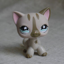 Pale Grey flower Eyes Kitty Cat  LPS mini Action Figures #468 LITTLEST PET SHOP