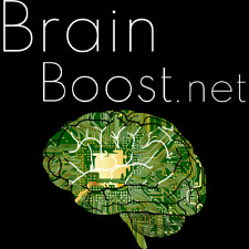 BrainBoost.net premium domain name - No reserve!