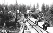 1920 REPRINT PHOTO OREGON Silverton Lumber CO RR Trestle Creek Camp Crew Workers