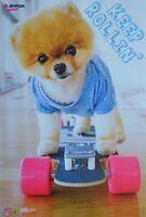 JIFFPOM - A3 Poster (ca. 42 x 28 cm) - Hund Clippings Fan Sammlung NEU
