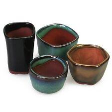 Happy Bonsai 4 Mini Glazed Pots
