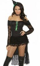 Woman Emerald Nites Witch Adult Halloween Costume Elegant Moments