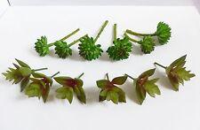 Doll House Decor Miniature Artificial Succulents Lotus Stone Grass Set of 12
