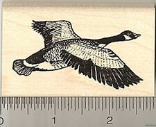 Canadian Goose Rubber Stamp, Canada, North America Bird H4301 WM
