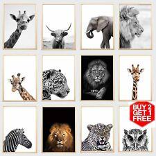 Animals Wall Art Prints Picture Nursery Safari Poster Kids Bedroom Decor Framed