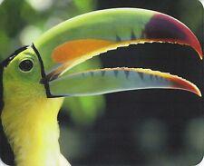 Mauspad Edition Colibri: Regenbogen - Tukan - schönes Porträt