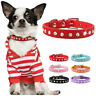 Rhinestones Soft Suede Pet Puppy Cat Extra Small Dog Collars Chihuahua XXS XS S