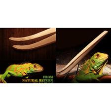 New listing Eco-Friendly Bamboo Tool Angled Reptile Terrarium Feeding Tweezers Jf