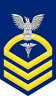 "Hospital Corpsman HM Navy Chief E-7 Gold 5.5"" Rank Sticker / Decal"