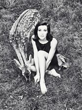 1966 WINGATE PAINE Vintage Fashion Woman With Deer Rabbit Animal Photo Art 11x14