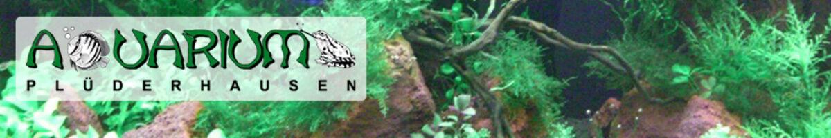 Aquarium Plüderhausen