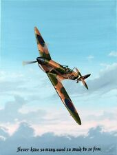 "Authentic Supermarine Spitfire Painting By Ray Waddey Signed Mint 18"" By 24"""