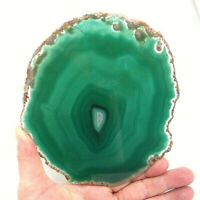 Green Agate Slice with Quartz Crystal 16cm Polished Extra Large Geode Slice