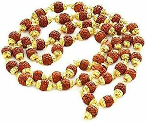 Rudraksh Chain