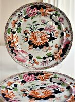 Antique Hicks and Meigh Waterlily Lilly Imari 25cm wide Plate Set of 2 c.1820