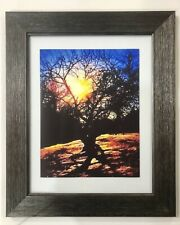 """""""Tree Of Love And Light� Art Gifts Come Matted/ Framed (5 Available)"""