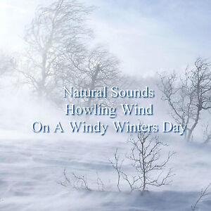 Howling Wind CD Relaxation Deep Sleep Stress Anxiety Relief Calm Healing Nature