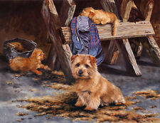 NORFOLK TERRIER DOG FINE ART LIMITED EDITION PRINT - by Pippa Thew - # 409/500