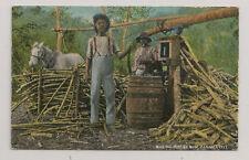 PANANA CITY  Making Jungle Rum