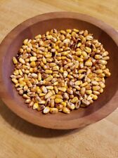 Prairie Hearth Parched Corn Bowl Jar Fillers Buttery Pantry Fall Harvest Look