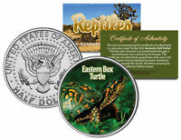 EASTERN BOX TURTLE * Collectible Reptiles * JFK Half Dollar US Colorized Coin NC