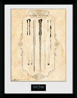 Harry Potter - Harry's Wand Collector Print 40 x 30 cm