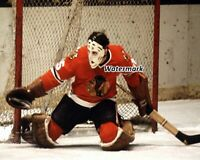 NHL 1970's Tony Esposito Chicago Black Hawks Color Game Action 8 X 10 Photo Pic