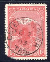 Tasmania nice 1903 DETENTION RIVER pmk (type 1a) on 1d pictorial rated S-(4)